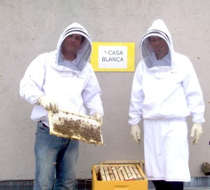 Bees and beekeepers at The Fairmont