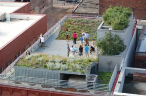 ASLA green roof