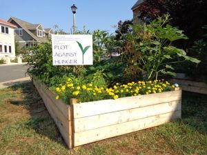 A Plot Against Hunger garden